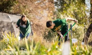 Two Cal Poly students doing volunteer work at Growing Grounds Farm.